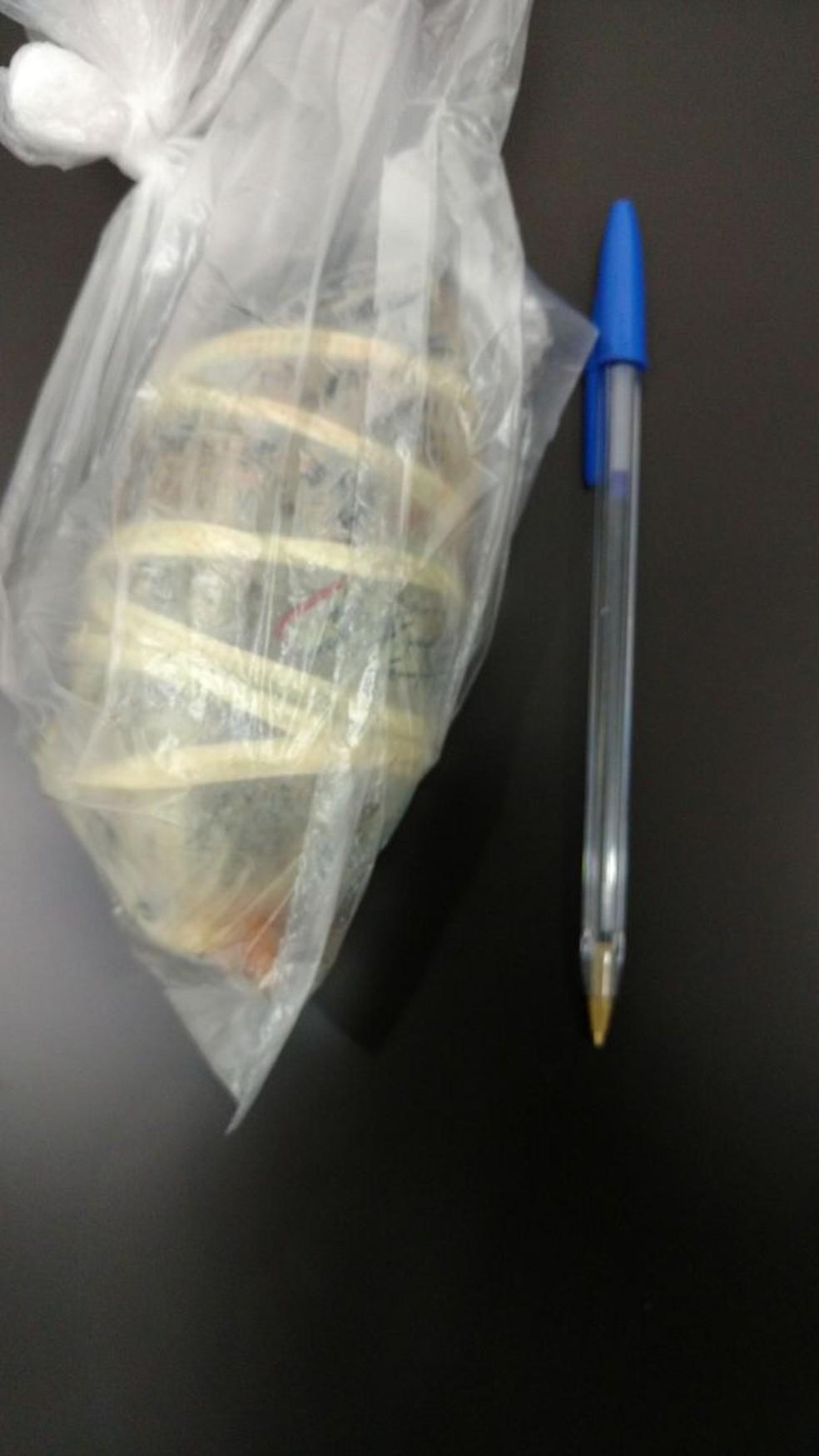 Porção da droga localizada nas partes íntimas da suspeita em MS (Foto: Polícia Civil/Divulgação)