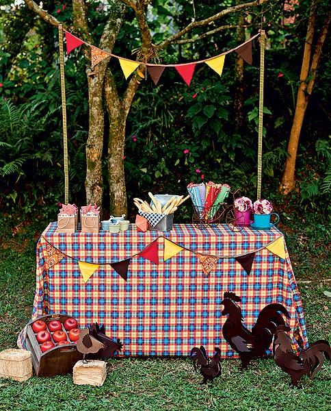 O arraial vai rolar no jardim da casa? Monte uma barraquinha e enfeite-a com toalha de mesa feita com tecido xadrez e bandeirinhas (Foto: Foto Ricardo Corrêa/Editora Globo | Realização Cláudia Pixu | Produção Luana Prade)
