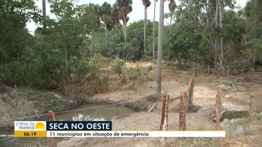 Com estiagem prolongada, 11 dos 35 municípios do oeste da Bahia decretam situação de emergência