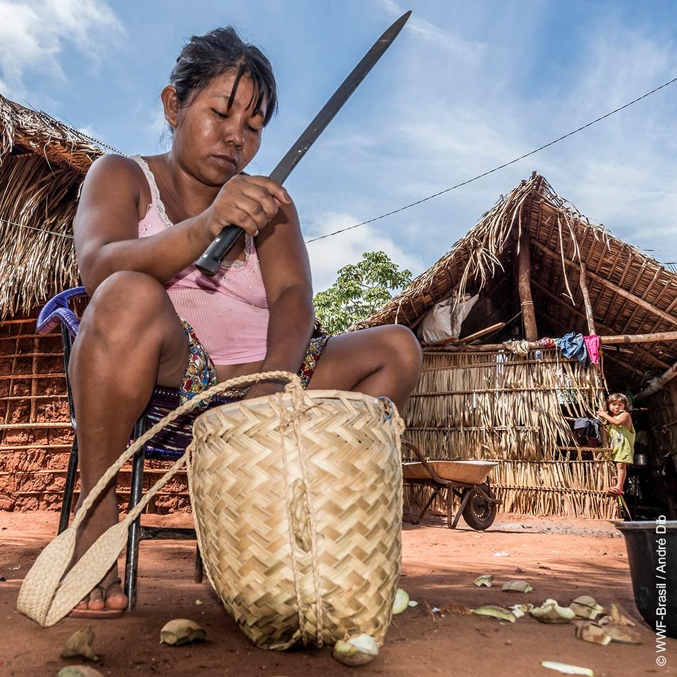 O trabalho dos nativos é indispensável para a preservação do Bioma — Foto: WWF-Brasil/André Dib
