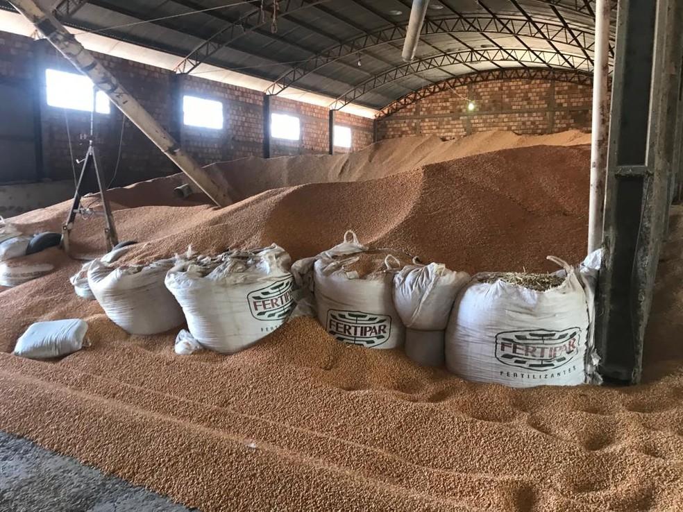 Carga de milho foi roubada e colocada em caminhões bitrem — Foto: Arquivo Pessoal