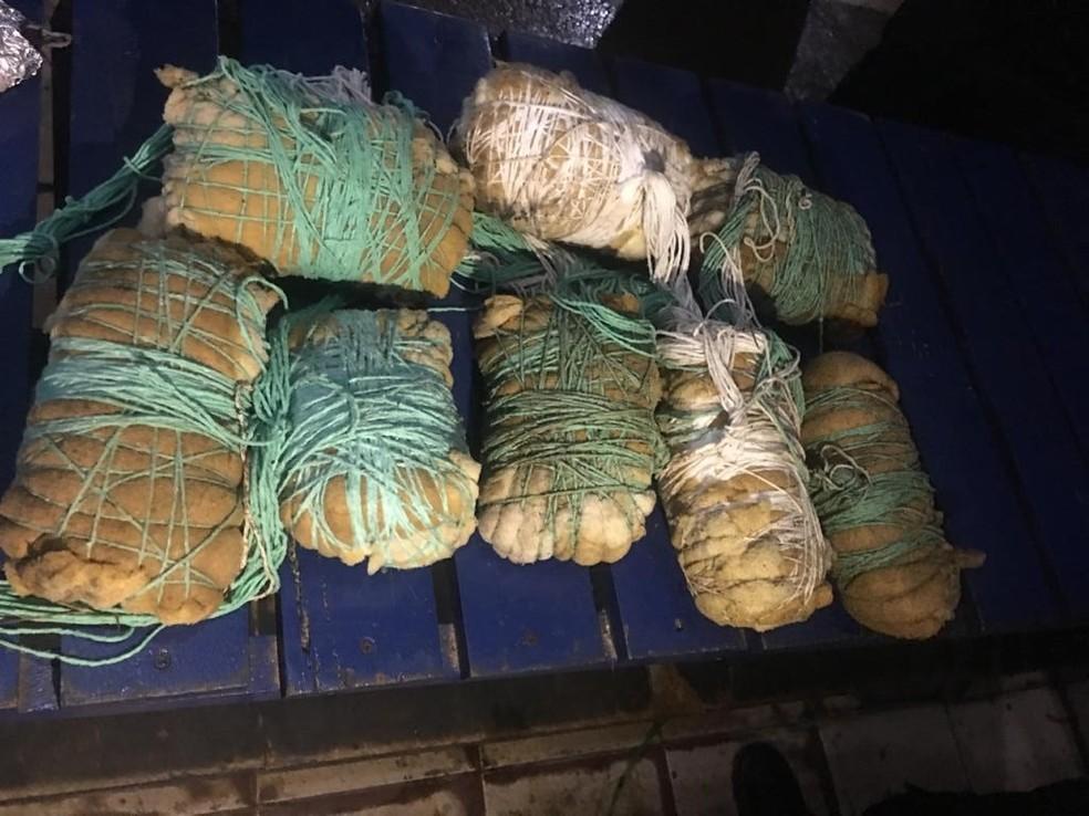 Material ilícito é embalado em espuma para que os celulares não quebrem ao cair dentro do presídio em Porto Velho — Foto: Sejus/Divulgação