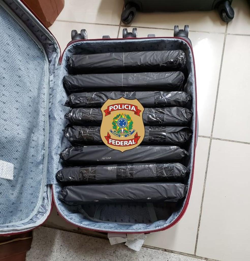 Quatro mulheres transportaram a droga de SP para Natal — Foto: Polícia Federal/Divulgação