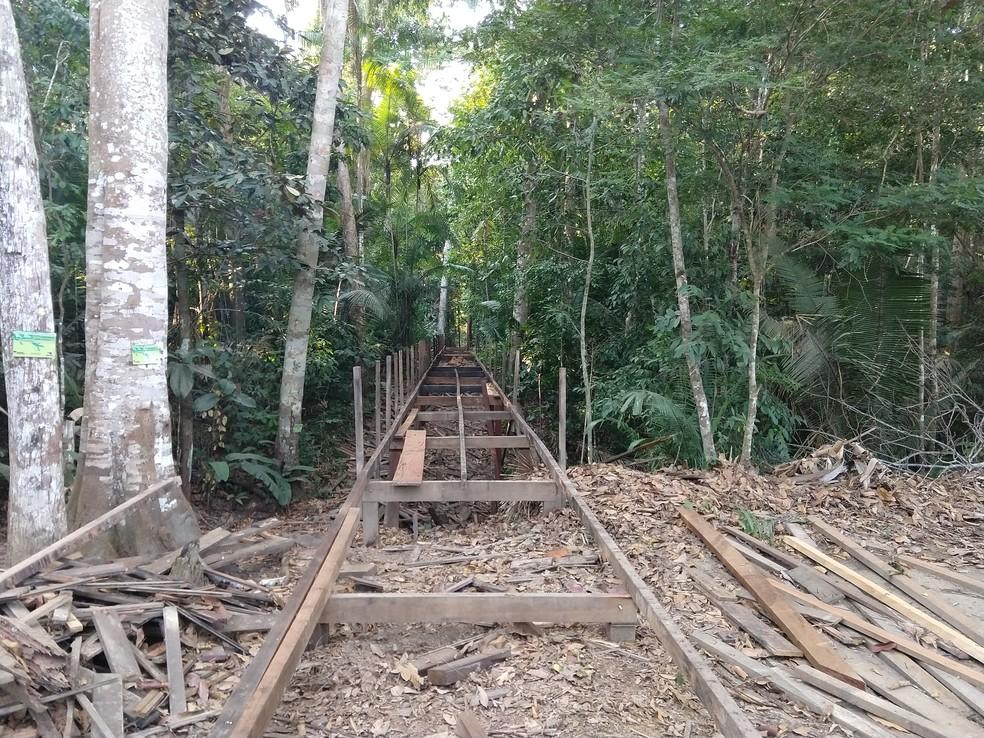 Madeira da trilha elevada será trocada no Parque Natural de Porto Velho (Foto: Jonatas Boni/ G1)