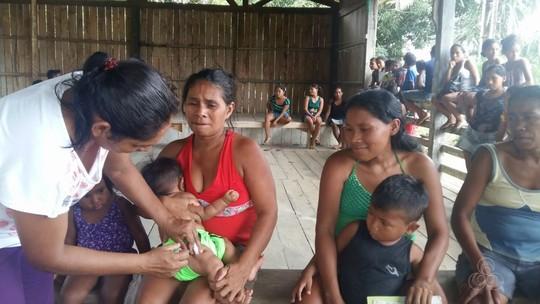 Após morte de macacos, vacinação é intensificada em cidade do Amazonas