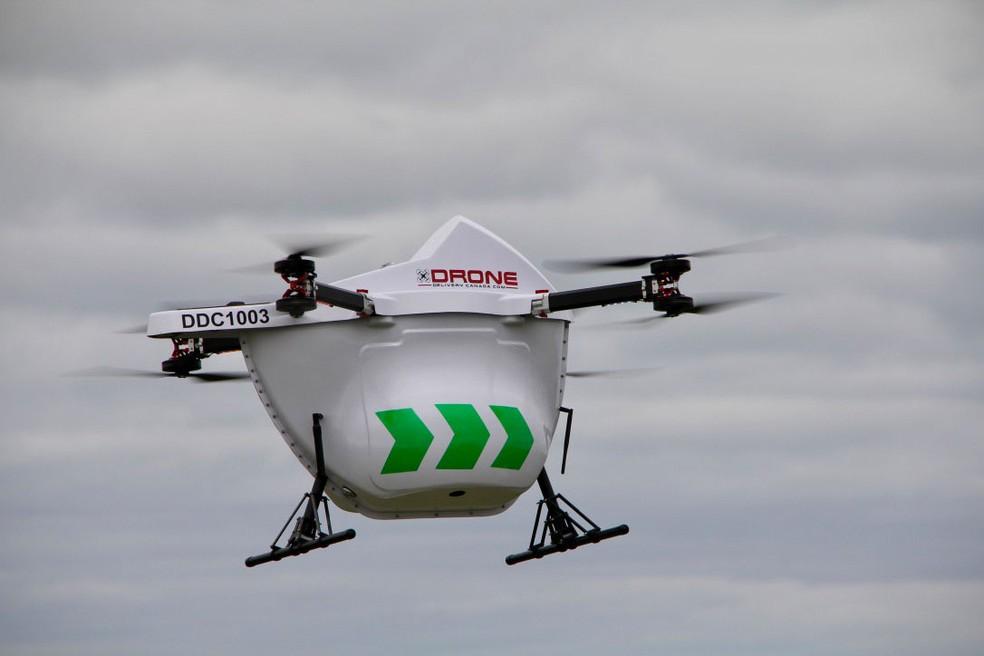 Drones vão fazer entregas em ilha remota do Canadá  — Foto: Divulgação/Drone Delivery Canada