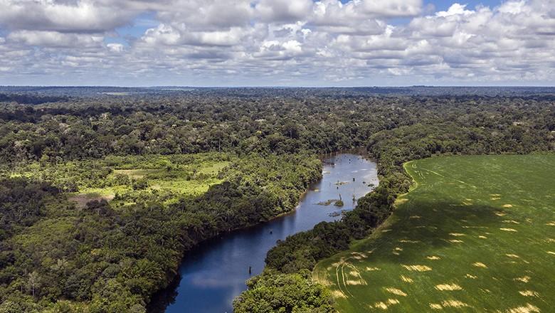 Na foto, rio cercado por paisagens diversas. O site traz informações didáticas sobre os biomas tropicais terrestres e marinhos no planeta (Foto: Divulgação/Embrapa)