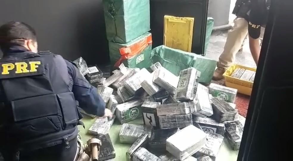 PRF prende quatro pessoas com 540 kg de cocaína em São Miguel dos Campos, AL — Foto: Ascom/PRF