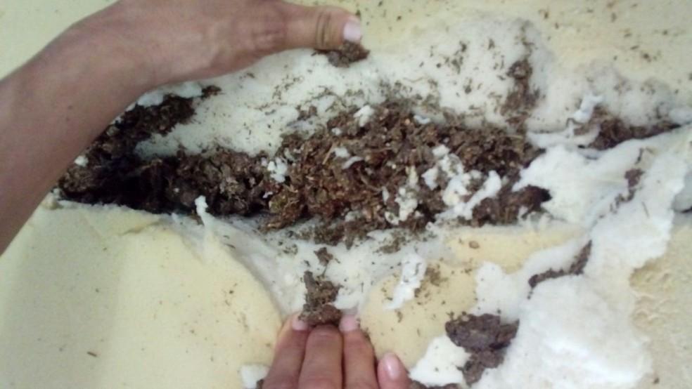 Casal entregou colchão 'recheado' de maconha no Complexo Penal de Pau dos Ferros, no RN (Foto: Divulgação)