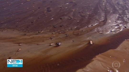 Mancha escura surge no mar por causa de obra em condomínio em Muro Alto