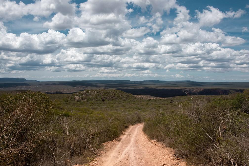 Parque Nacional do Boqueirão da Onça possui 347 mil hectares protegidos para preservação da caatinga e das espécies que vivem na região, como a onça-pintada, a onça-parda e a arara-azul-de-lear. — Foto: Marcelo Brandt/G1