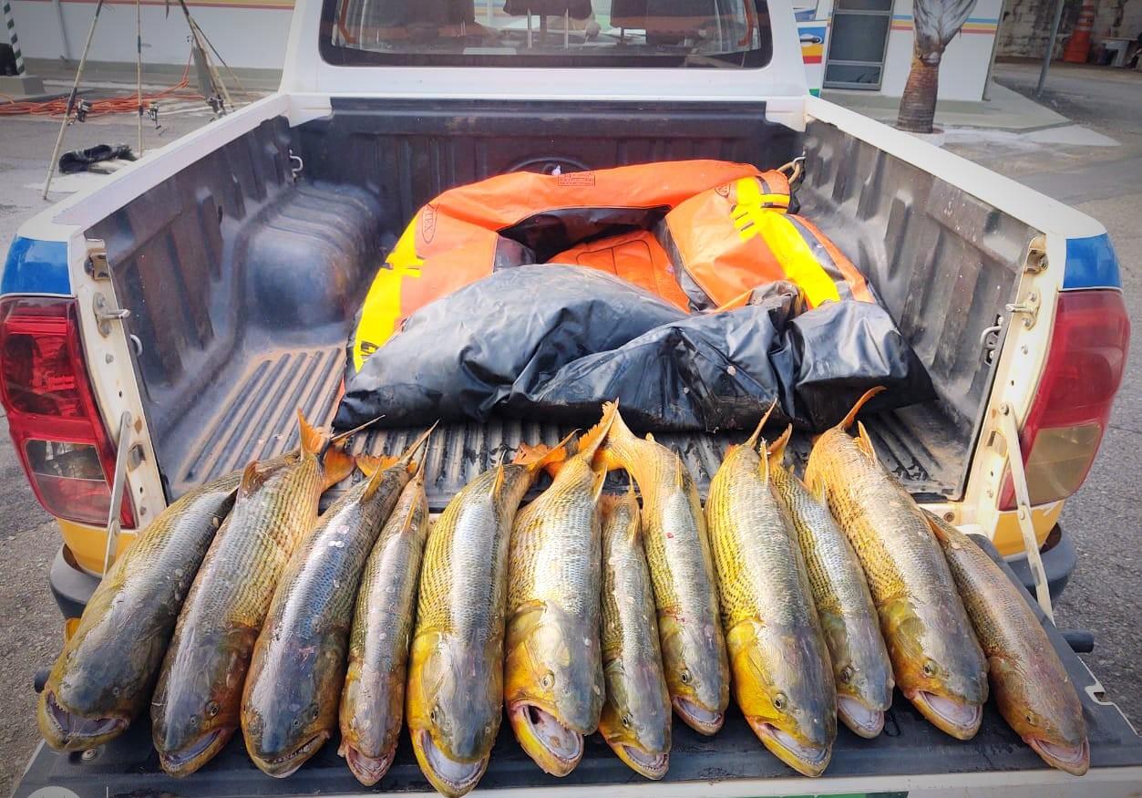 Polícia apreende 102 quilos de peixes e aplica multa de quase R$ 8,6 mil a suspeito de pesca irregular