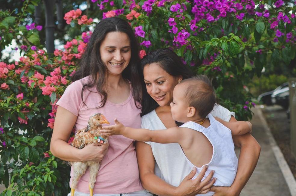 Além do 'franguinho' de estimação, Ben tem duas mamães — Foto: Amanda Moraes Fotografia/Divulgação