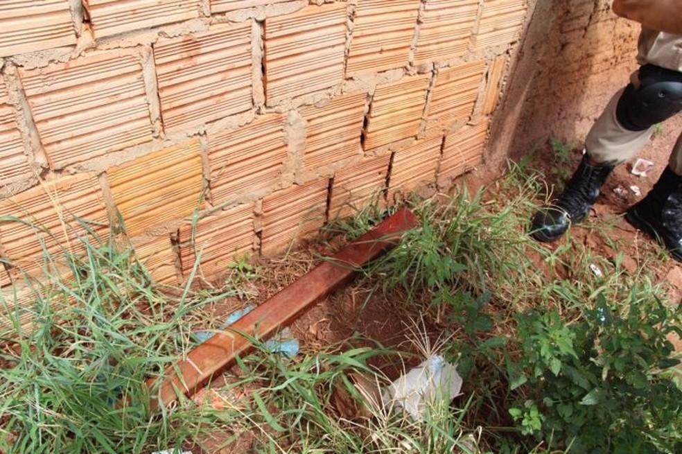 Madeira usada para matar carvoeiro (Foto: Roni Cezar Leal/Alvorada Informa/Divulgação)