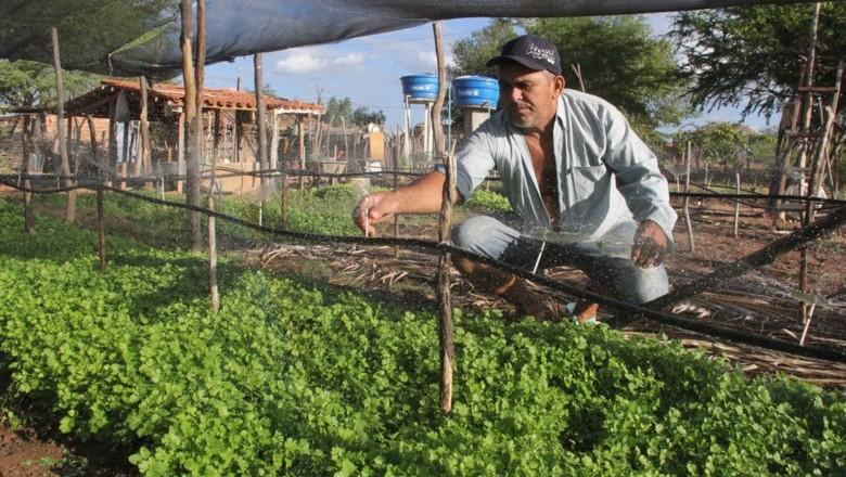 irrigação-agricultura-familiar (Foto: Divulgação/Ama)