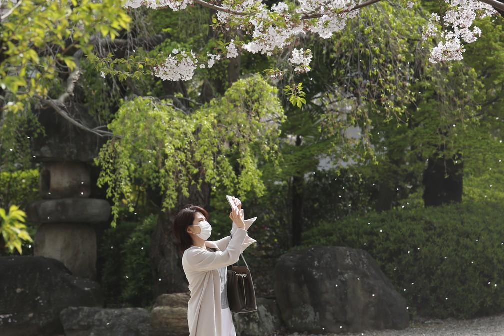 Mulher com máscara para se proteger da propagação do coronavírus tira foto de flores de cerejeira em Tóquio em 30 de março — Foto: Koji Sasahara/AP