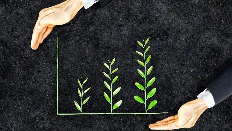 sustentabilidade-melhores-do-agro- (Foto: Thinkstock)