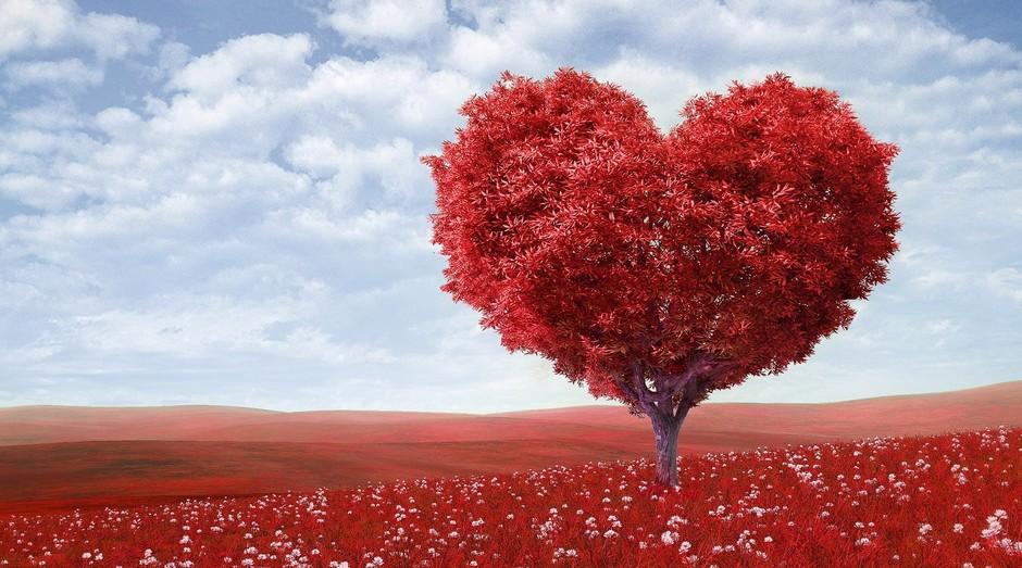 Dia dos Namorados (Foto: Reprodução/Pexel)