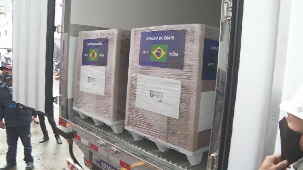 Butantan libera maior lote de vacinas ao governo federal — Foto: Reprodução/TV Globo