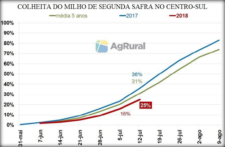 Colheita do milho chega a 25% no Centro-Sul, segundo a AgRural (Foto: Divulgação/AgRural)