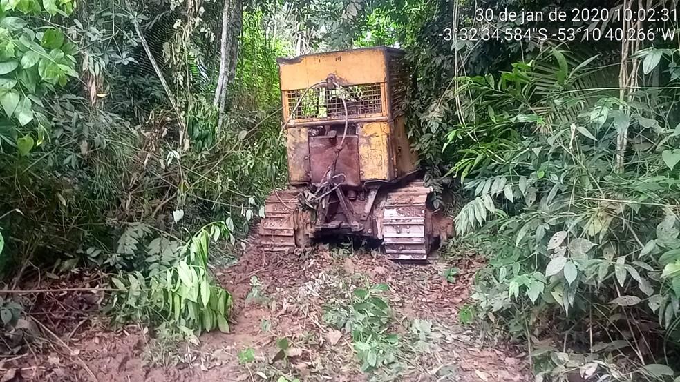 Trator esteira, utilizado para abrir estradas clandestinas na Terra Indígena Arara do Laranjal, foi encontrado escondido na mata. — Foto: Ibama