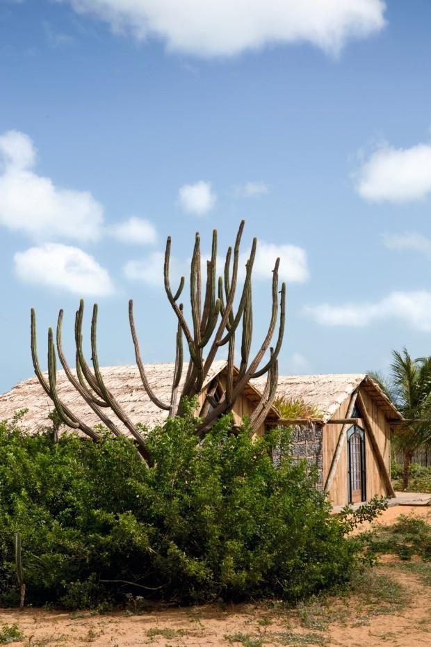 A casa de praia de Itamar Cechetto, um dos membros do conselho do Prêmio Muda, foi construída de forma sustentável com matérias-primas nativas  (Foto: Filippo Bamberghi/Casa Vogue)