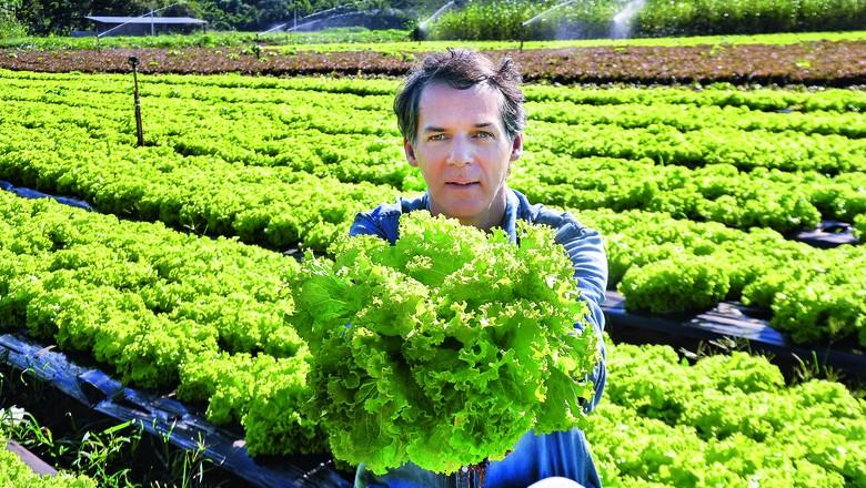 Roberto Lunardelli, da Fazenda da Mata Orgânicos (FDM), de Neirópolis, próximo a Goiânia (GO) (Foto: Divulgação)