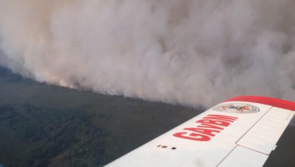 Bombeiros combatem incêndio no Pantanal — Foto: CBM/MT
