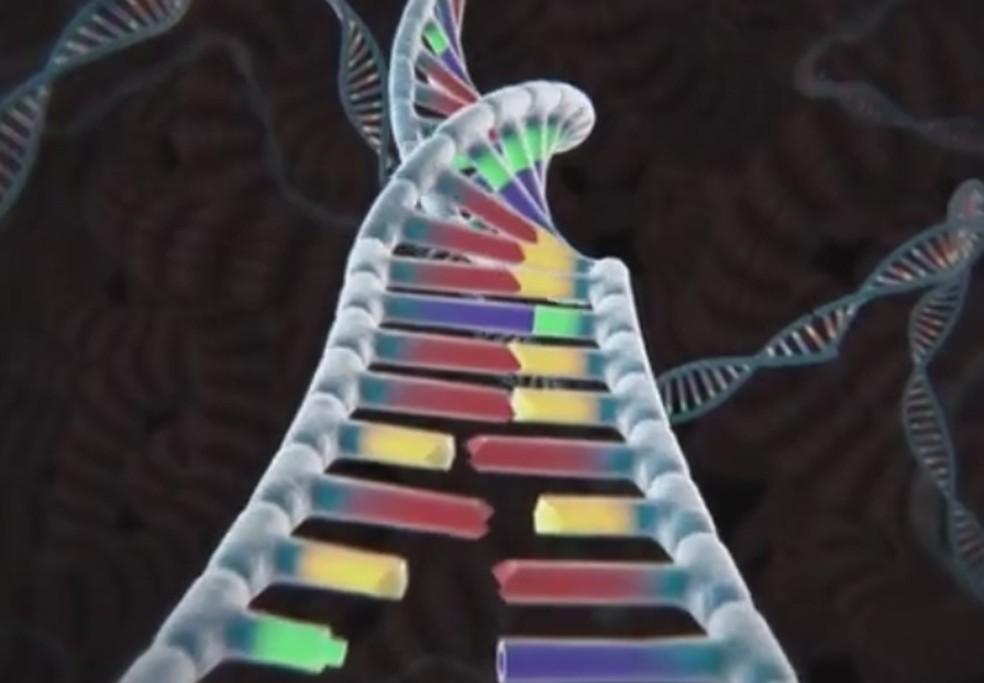 Técnica de edição do DNA (Foto: Reprodução)