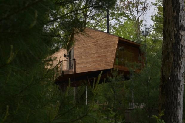 Casa na árvore em Nova York (Foto: Divulgação / Martin Dimitrov)