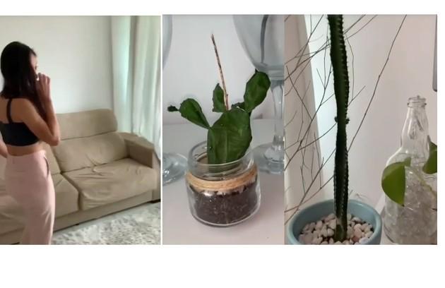 Amiga com quem Juliette divide apartamento mostra sofá e as plantas que a advogada cultiva (Foto: Reprodução/TV Globo)