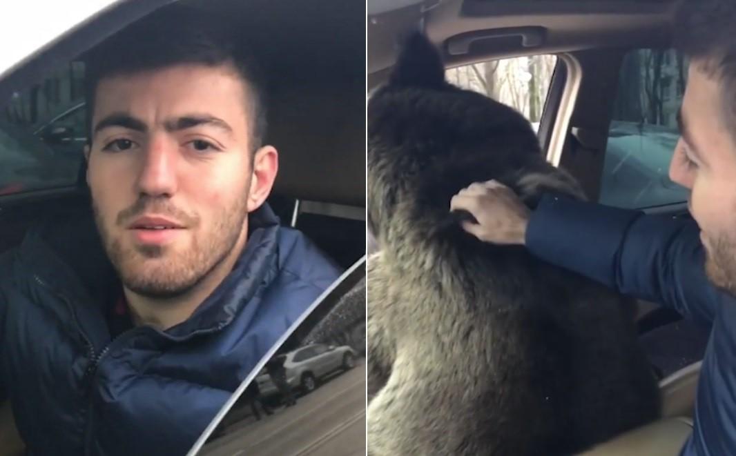 Russo dá carona a urso e é chamado de louco
