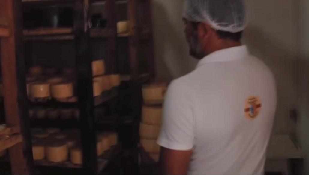 Produtores de queijo do Sul de Minas recebem selo de reconhecimento artesanal