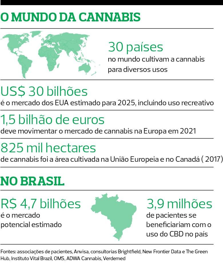 a cannabis, que não dá barato, tem uso medicinal, industrial e mercado crescente. O país tem solo  e clima propícios para a planta,  mas o cultivo é proibido   (Foto: Divulgação)