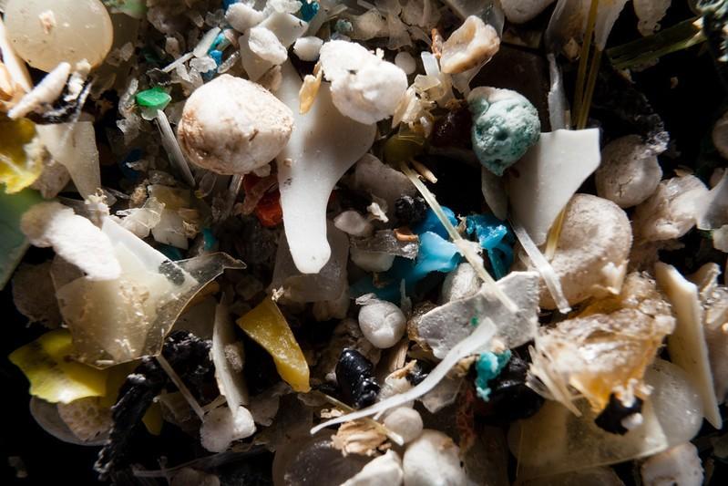 Microplásticos estão presentes na água potável, mas riscos para a saúde são desconhecidos, diz OMS - Notícias - Plantão Diário