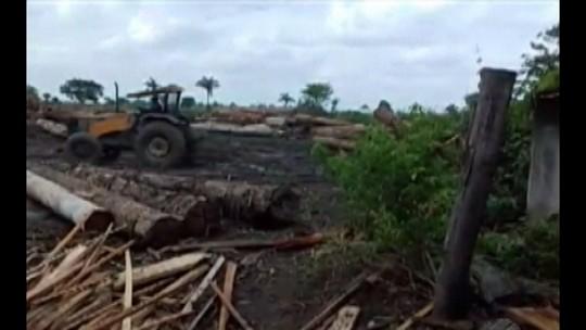 Operação destrói serrarias clandestinas em Baião, PA