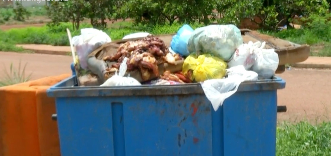 Restos de carnes são descartados de forma irregular e causam mau cheiro em quadra de Palmas - Notícias - Plantão Diário