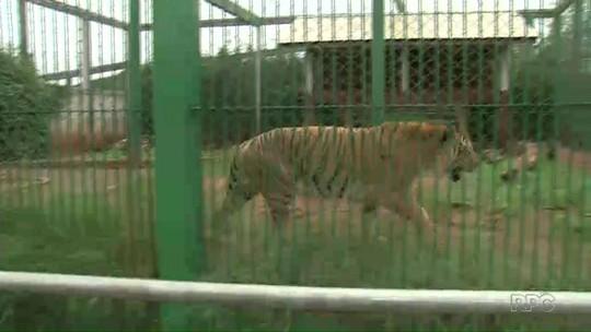 Primeiro zoológico do sudoeste é aberto ao público em Dois Vizinhos