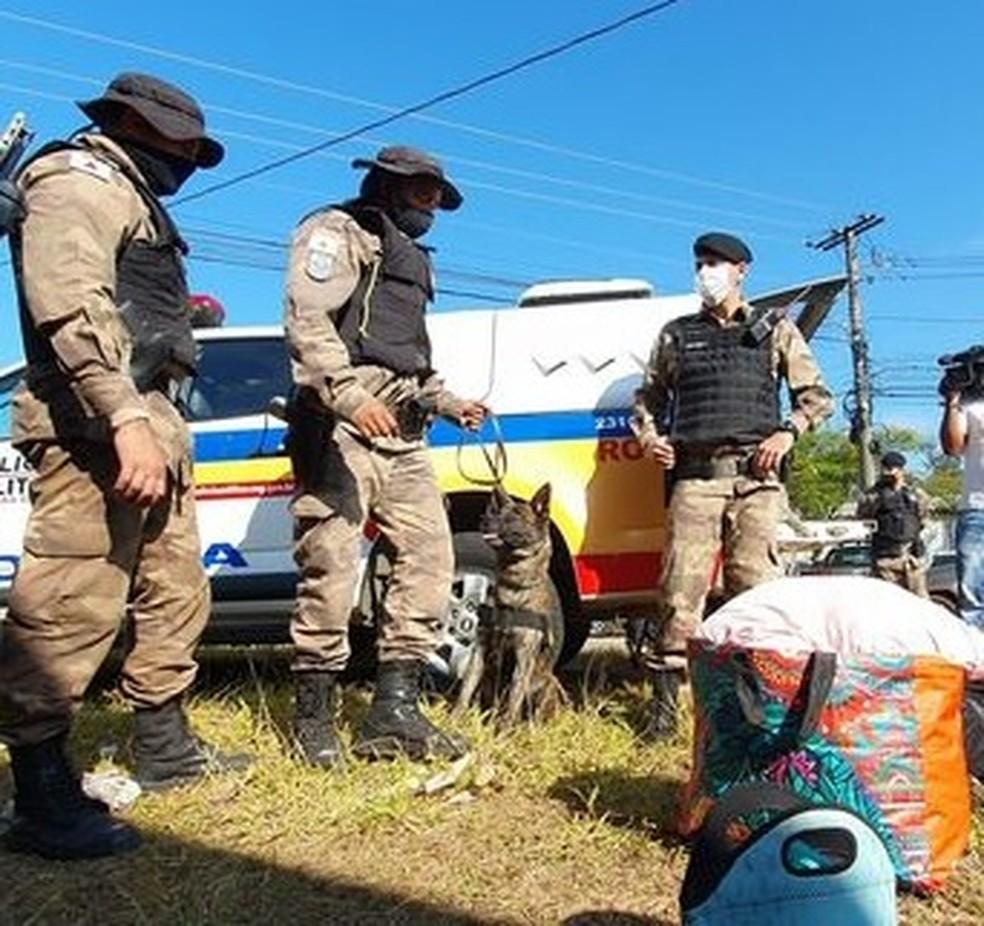 Polícia prende 160 pessoas durante operação no feriado de Corpus Christi — Foto: Divulgação/PMMG