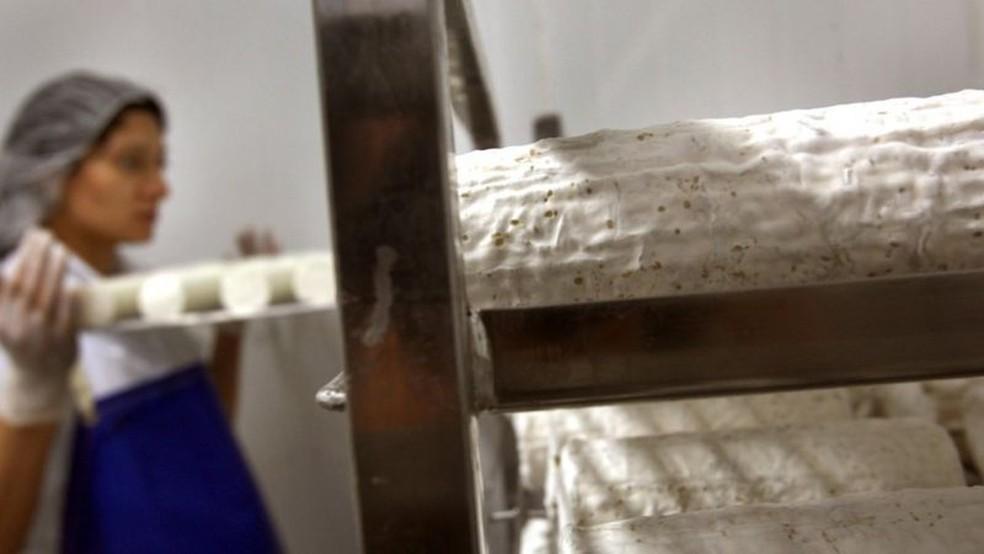 Alguns queijos, como gorgonzola e roquefort, são deliberadamente infectados com fungos — Foto: Getty Images via BBC