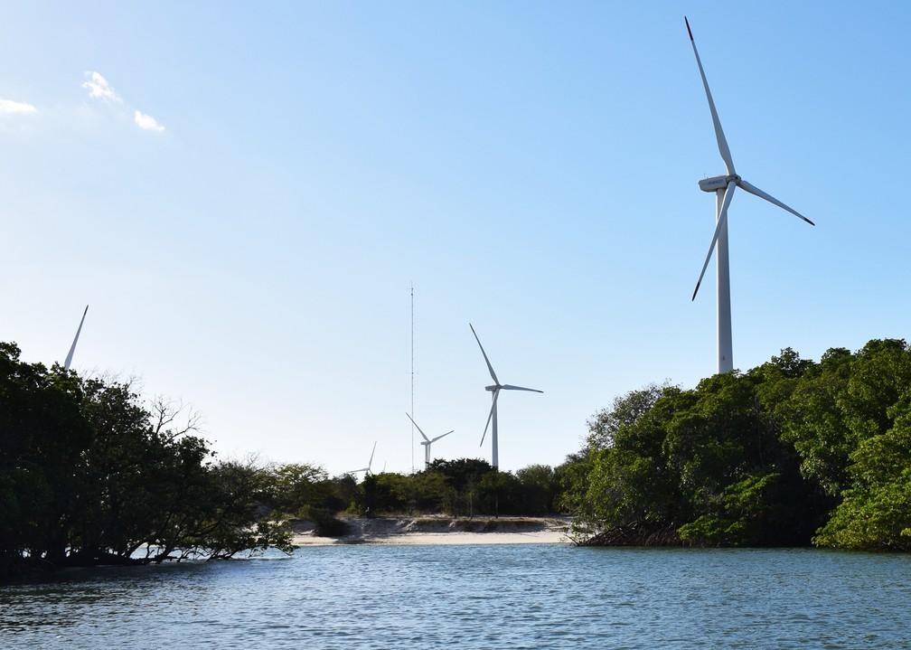 Cataventos gigantescos das empresas de energia eólica compõem o cenário em meio às gamboas, por onde são feitos os passeios de barco (Foto: Maxwell Almeida)