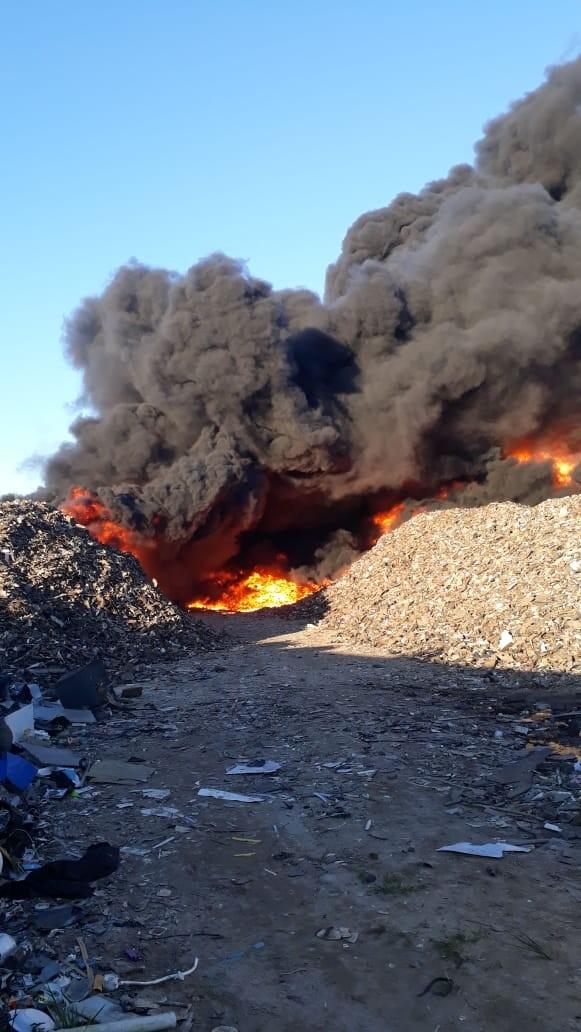 Incêndio de grandes proporções atinge depósito de recicláveis em SP; VÍDEO