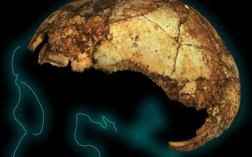 Homo erectus é ao menos 100 mil anos mais velho do que se imaginava