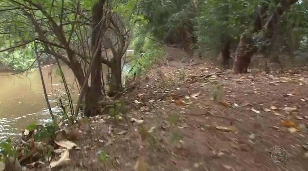 Menino que morreu em Maracaí morava em região próxima a mata e rio, habitada por capivara, a hospedeira do carrapato estrela  (Foto: TV TEM/Reprodução)