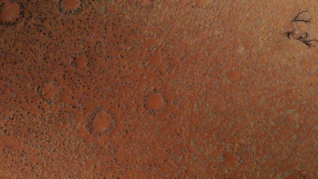 Os 'anéis de fadas' e outros mistérios do deserto mais antigo do mundo