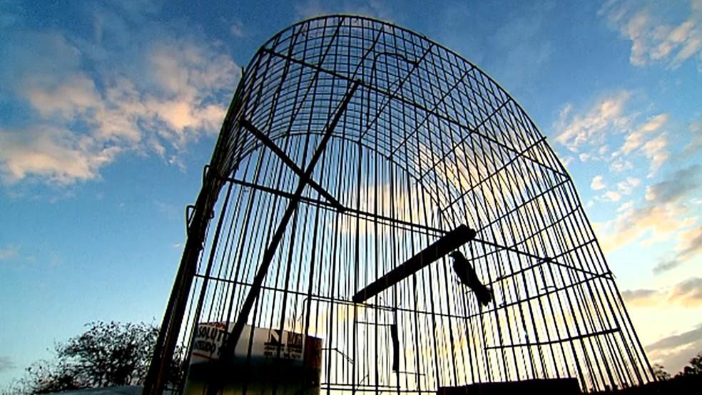Idoso no Sertão da Paraíba já foi preso 14 vezes nos últimos 20 anos e teve 3.775 animais apreendidos pelo Ibama  (Foto: Reprodução/TV Globo)