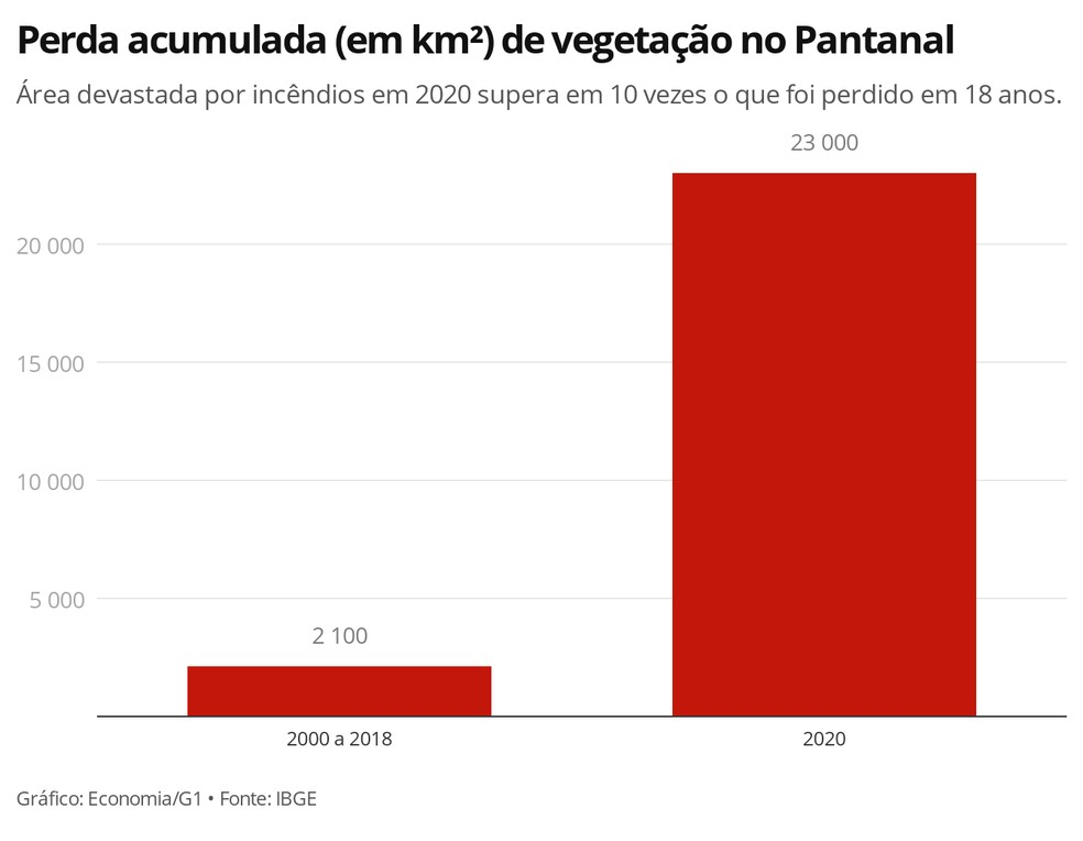 Pantanal já perdeu em 2020 cerca de 2,3 milhões de hectares em queimadas, o que equivale a 23 mil km² — Foto: Economia/G1