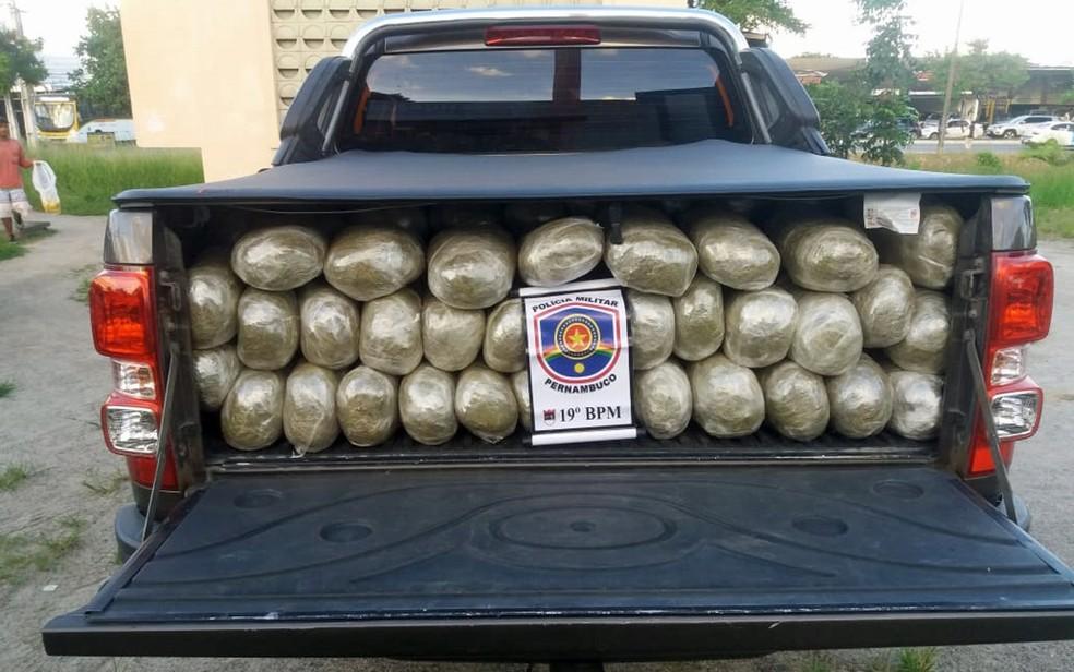 Droga foi encontrada em Gravatá, no Agreste de Pernambuco â?? Foto: Polícia Militar/Divulgação