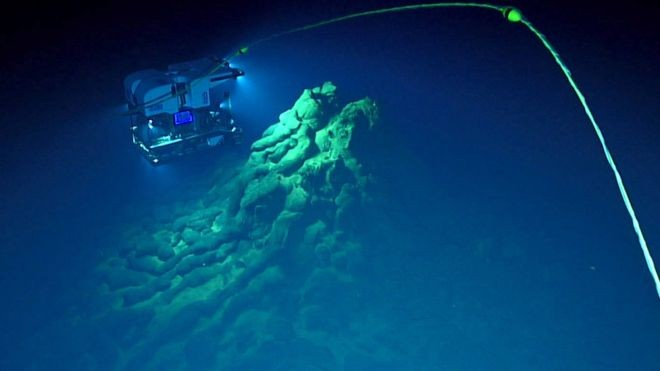 Imagens feitas por veículos robóticos usados para explorar a Fossa das Marianas, área mais profunda do planeta, permitiram a descoberta (Foto: BILL CHADWICK/NOAA/BBC)