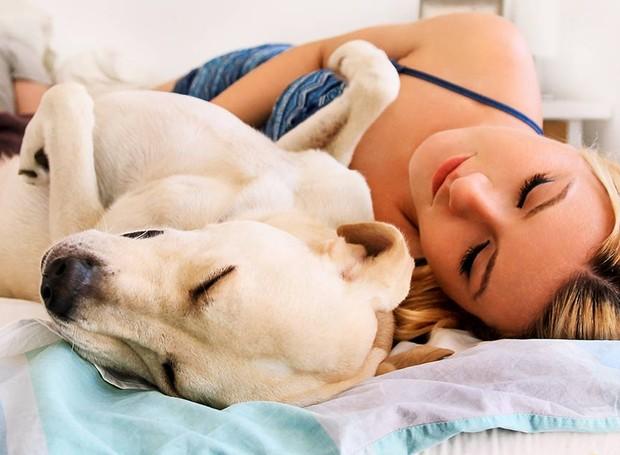 Estreitar a conexão entre donos e cães pode ser benéfico para o comportamento do animal (Foto: The Labrador Site/ Reprodução)